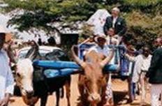 mariage de Jean Louis et Nicole